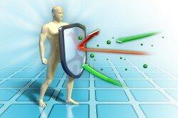 Польза лука для иммунитета